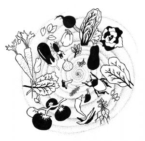 illustration Melissa Guion