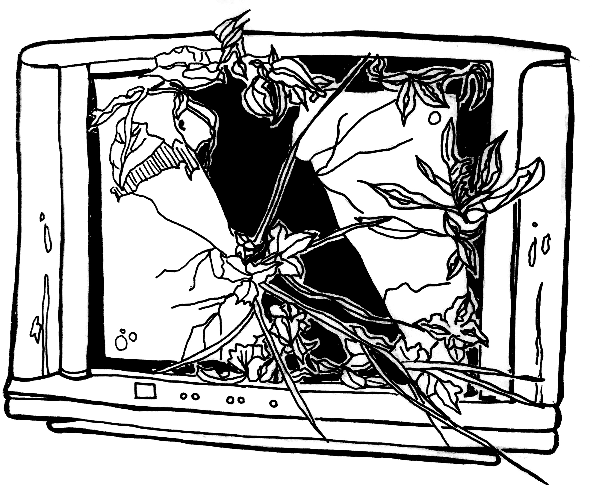 A black and white illustration of a tv with a cracked screen that has plants growing out of it. The tv and the screen are white and there's a large black hole in the middle of the screen where it's cracked. Plants are growing out of the middle, sides, and top. There are buttons on the bottom of the tv's frame. Illustration by Rachel Speck.