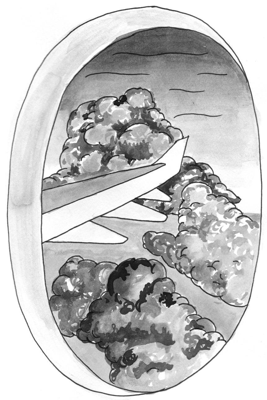 illustration Kallie Van Tassel