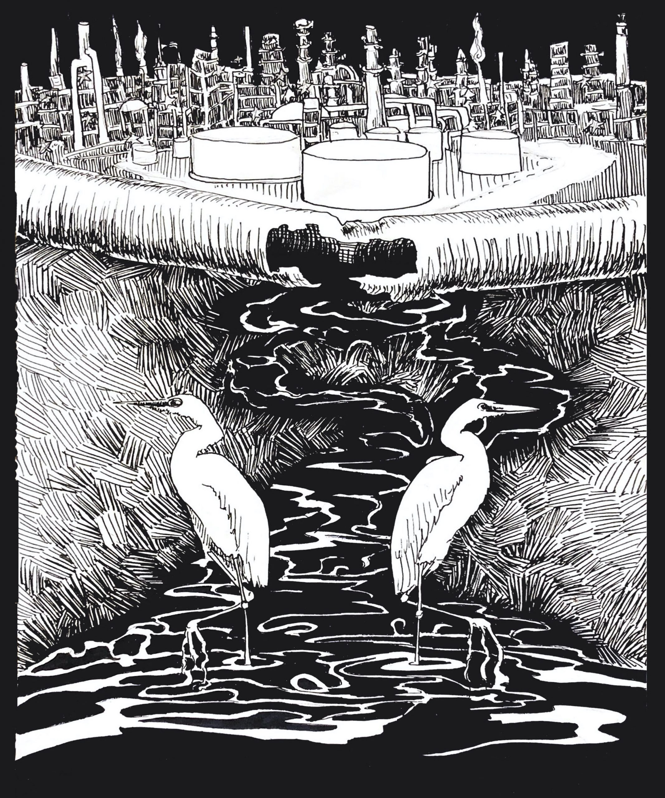 "A black and white illustration of egrets standing in dark water in the marsh, with oil refineries in the background. There are two egrets and they are facing away from each other. The water is black, and there's grass on either side. In the background is a fence, and beyond the fence is an oil refinery. The structures are all white and the sky is black. At the bottom reads ""St. John Makes, Marathon Takes: Communities Want a Refund"" in gray letters. Illustration by Pippin Frisbie-Calder."