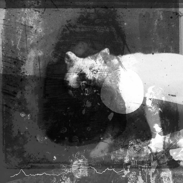 Album cover for As the Love Continues by Mogwai. It's a grayscale illustration of a wolf scowling at the camera with its mouth open. The wolf is white and the background is different shades of gray. The image is textured, like there's different mediums at play to make the image.